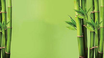bamboo image.jpg
