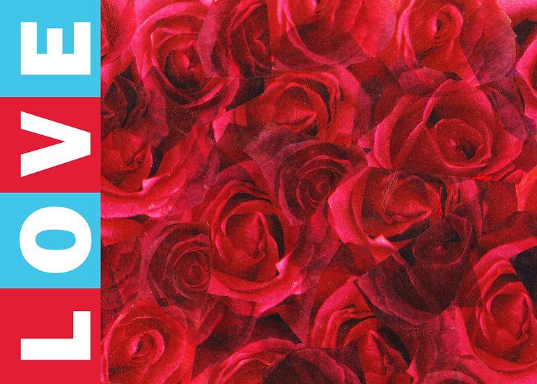 LOVE Roses Postcard - Set of 4