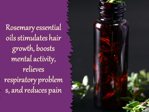 The Wonders of Rosemary Essential Oil (The Essential Oils Series)