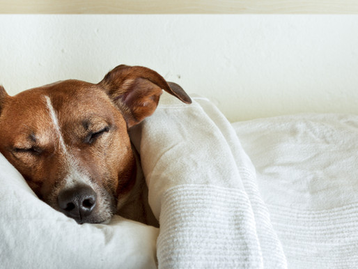 Get Better Sleep the Sleep Sweet Spot Way