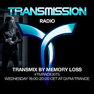 Transmission Audrey.jpg