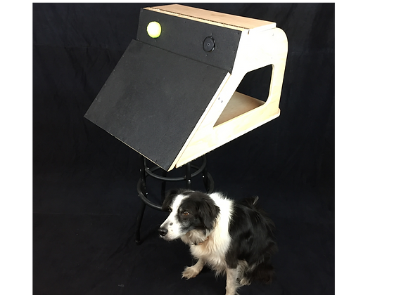 The Jarvis Flyball Box (with 2 launchers)