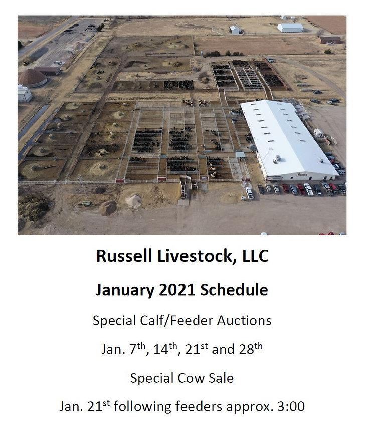 january 2021 sale schedule.JPG