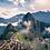 Thumbnail: Arbres en Amérique du Sud