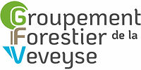 GFV Logo - RVB 300 dpi - pour utlisiatio