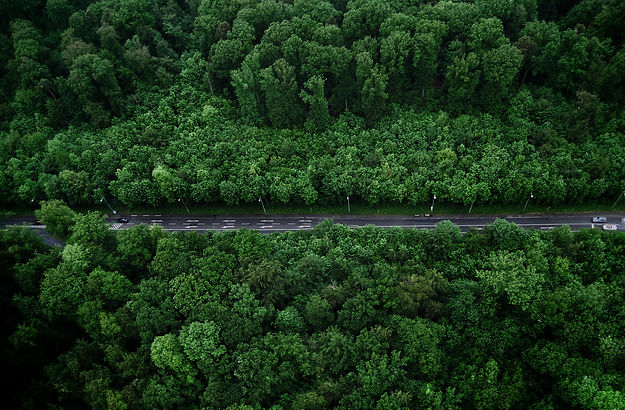 Canva - Bird's-eye View Photo of Road Wi