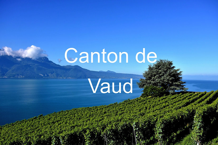 Plant in the Canton of Vaud