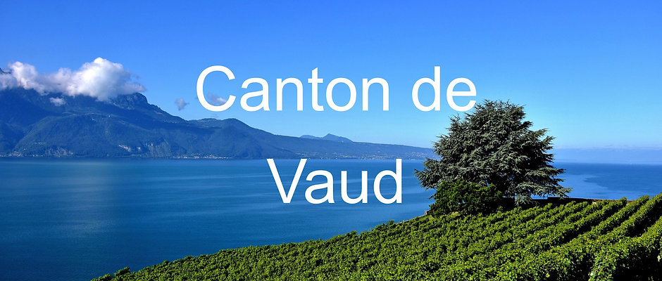Mother Day Card with a tree in Canton of Vaud