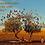 Thumbnail: Carte-cadeau avec un arbre en Australie