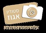 לוגו סטודיו אגוז