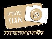 לוגו אגוז-01.png