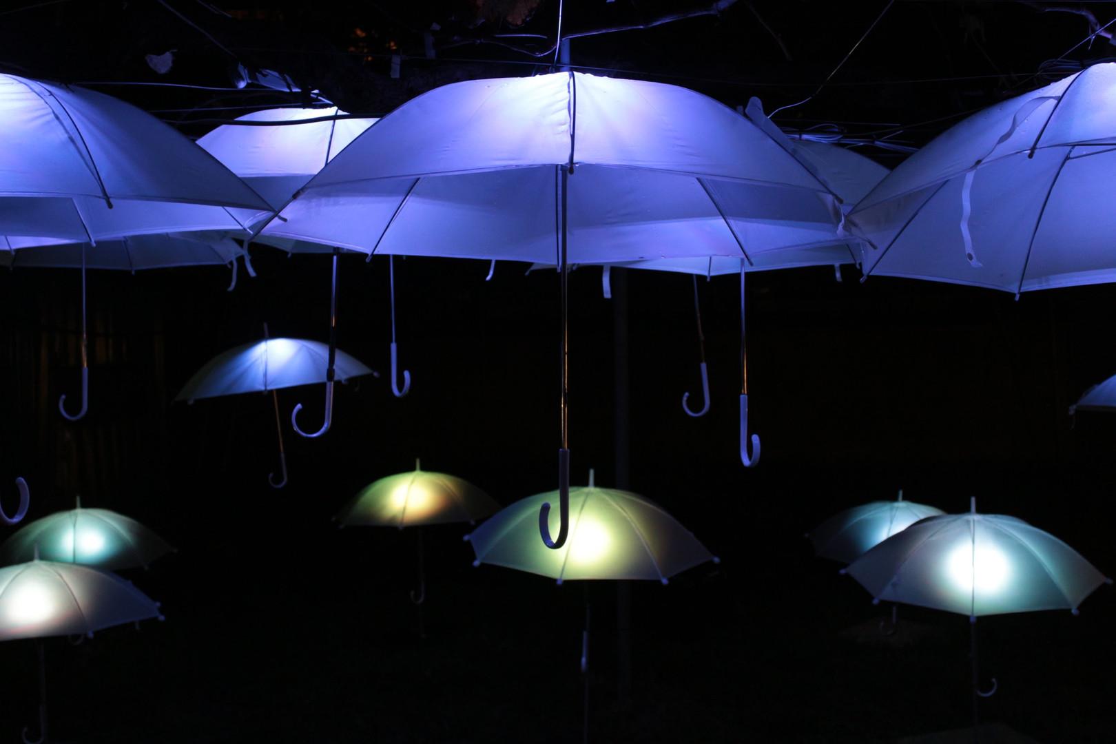 であいであい傘 in farm