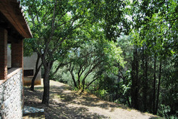 Exterior-Outdoor 3