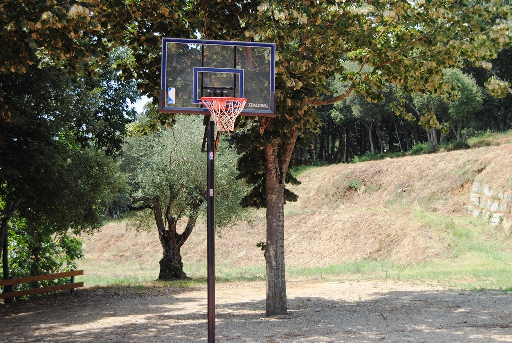 Basquet-Basketball 2