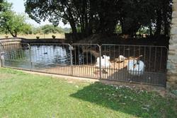 Granja-Farm 3