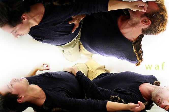 danza contemporánea pieza corta perros