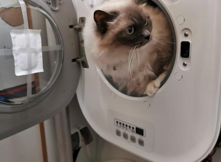 Testing our new mini wash machine