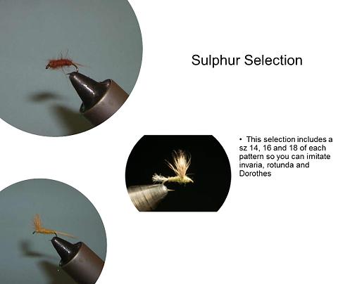 Sulphur Selection