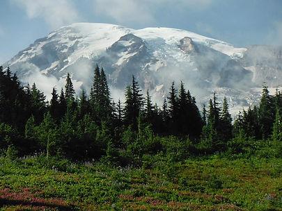 Mt Rainier National Park,.jpg