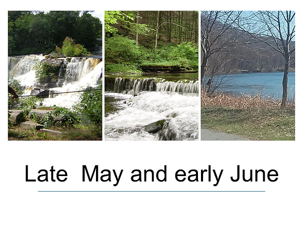 Late May Early June.png