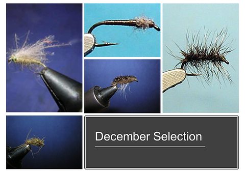 December Selection