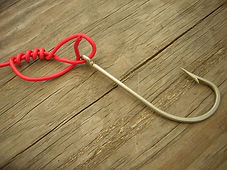 improved clinch knot (2).jpg