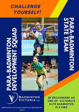 Para Development and State Team Poster (