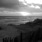 Sun Wave Fence