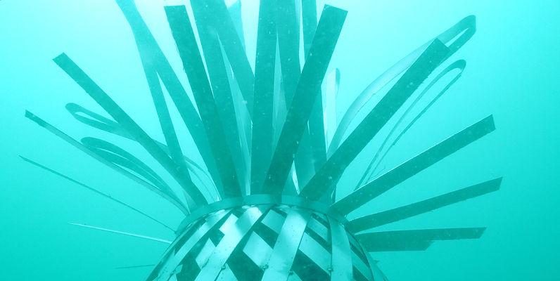 pineapple cropped.jpg