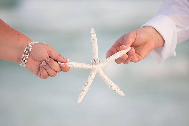 StarfishAndRings.jpg