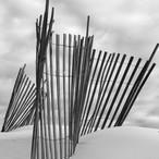 Dune Sentinel