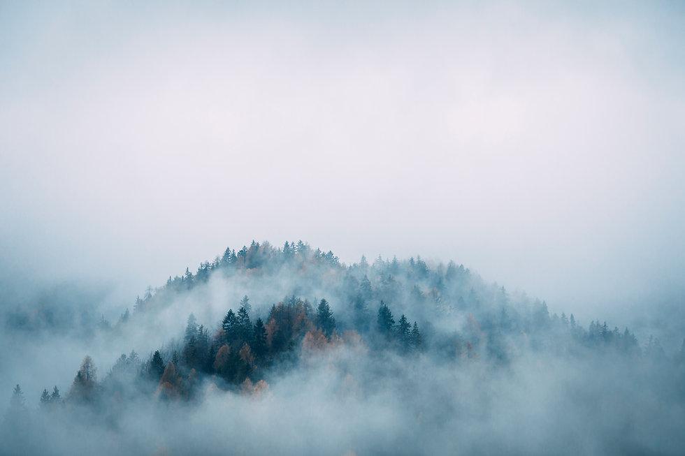 misty_KG.jpg