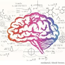 brainmap.png