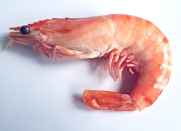 Large Crevettes (Cooked)