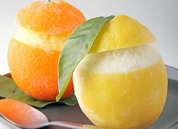 Orange & Lemon Sorbet