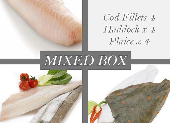 Mixed Fish Fillets (12 fillets)