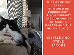 micah-the-cat-shiloh-place.png