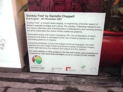 Donkey Fest, Festival of Light commissio
