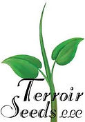 logo terrior.jpeg