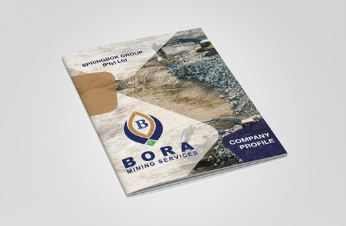 Bora Mining Company Profile
