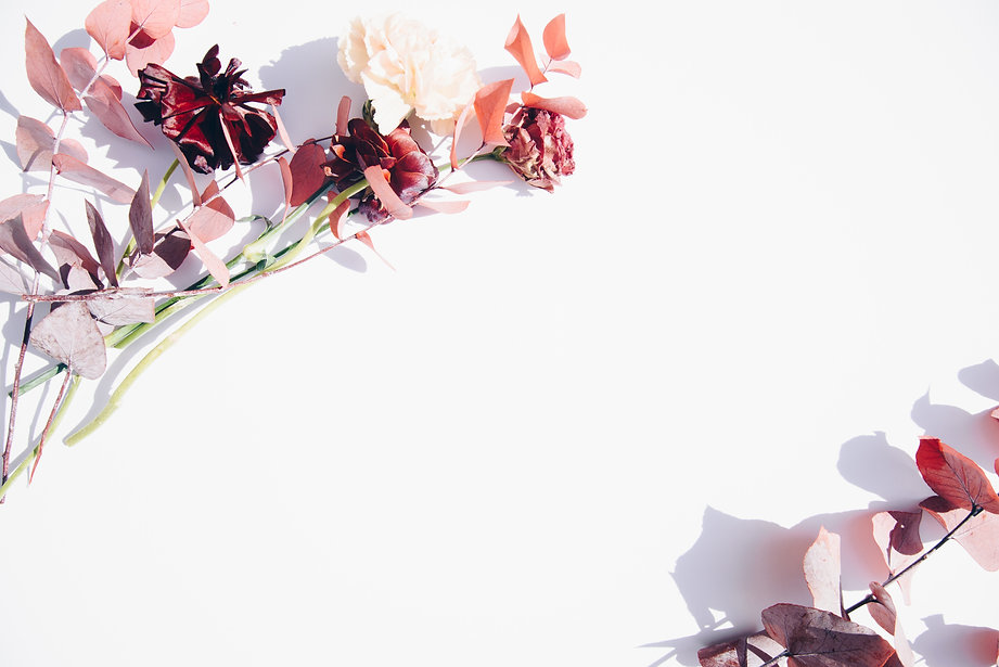 pink-and-white-flowers-on-white-wall-239