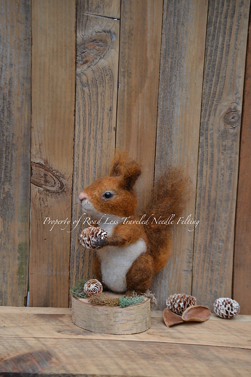 Red Squirrel with Pine Cone