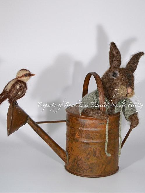 Hector & Sparrow