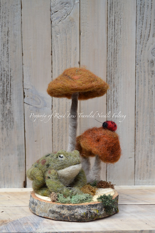 Frog under Toad Stools