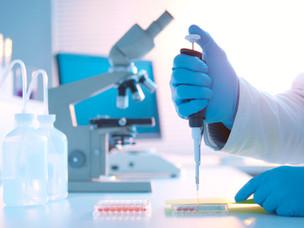 GSTM1 and GSTT1 genotypes on bladder cancer risk
