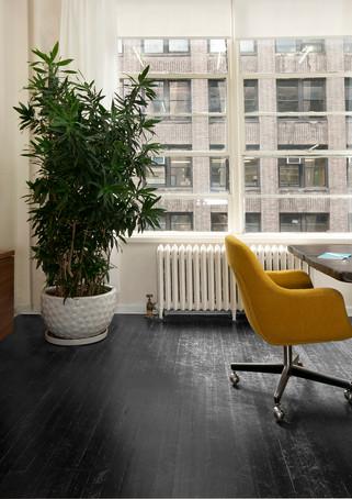 Fhasin snoop משרדי אופנה ניו יורק