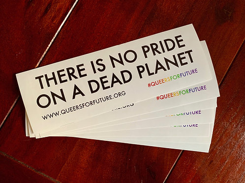 """Stickers: 1x 10 Pieces Stickers """"Queers for Future"""""""