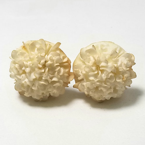 Designer by provenance earrings, vintage white flower, gold tone clip on backs