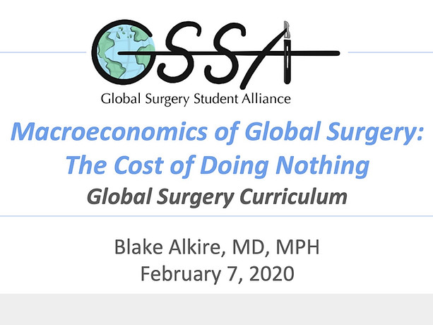 Macroeconomics of Global Surery: The Cost of Doing Nothing