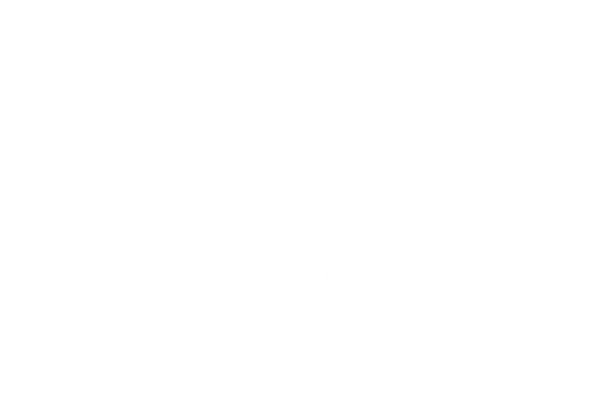 SmartCitySignals (LR)_Logo White.png